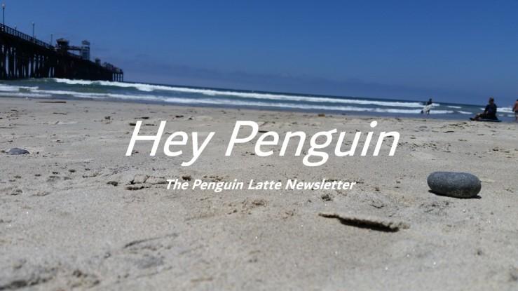 newsletter cover 1